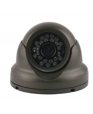 Sony dome camera 700TVL -zwart